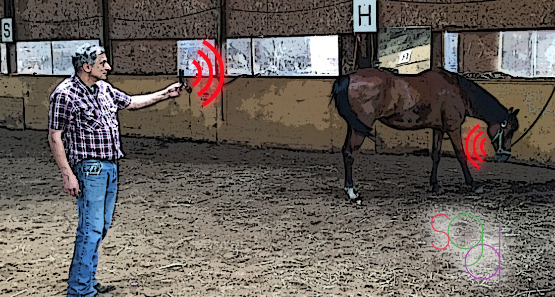 Wireless technology make this smartphone app release your horse from the stable.