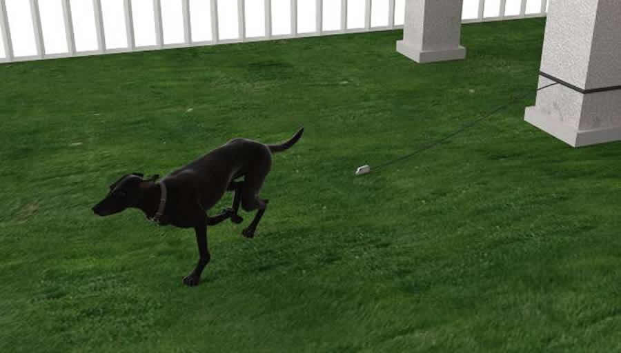 Just a tap on your smartphone and your dog is free to run.